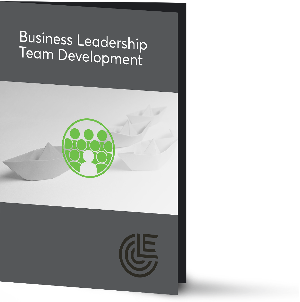 business-leadership-team-development