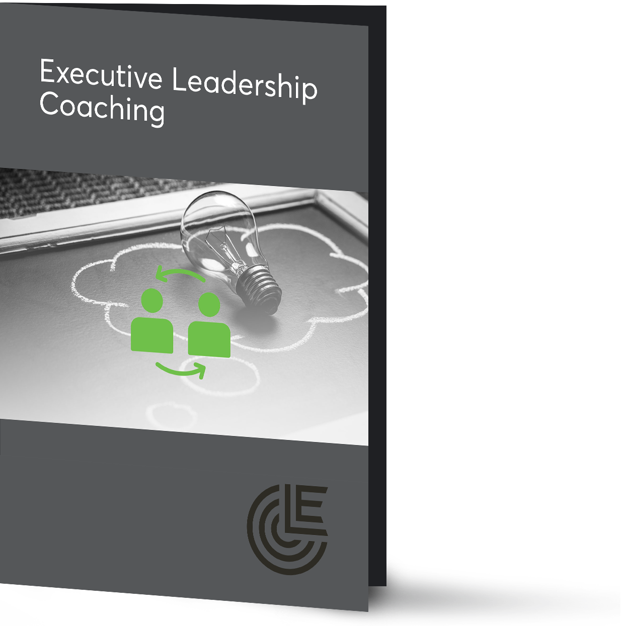 Executive-Leadership-Coaching