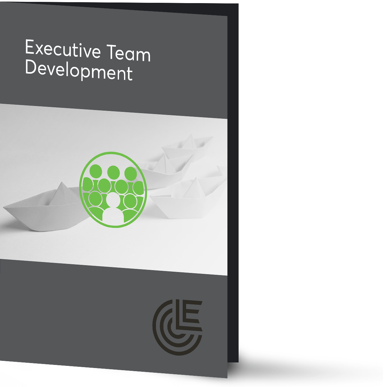 executive-team-development-brochure