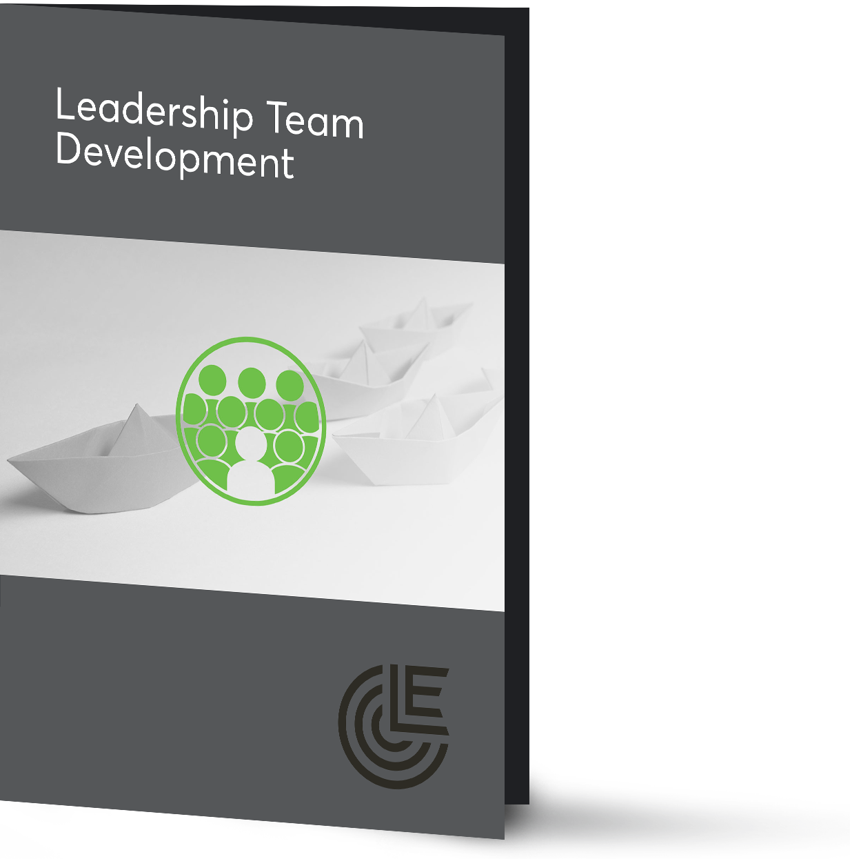 leadership-team-development-brochure