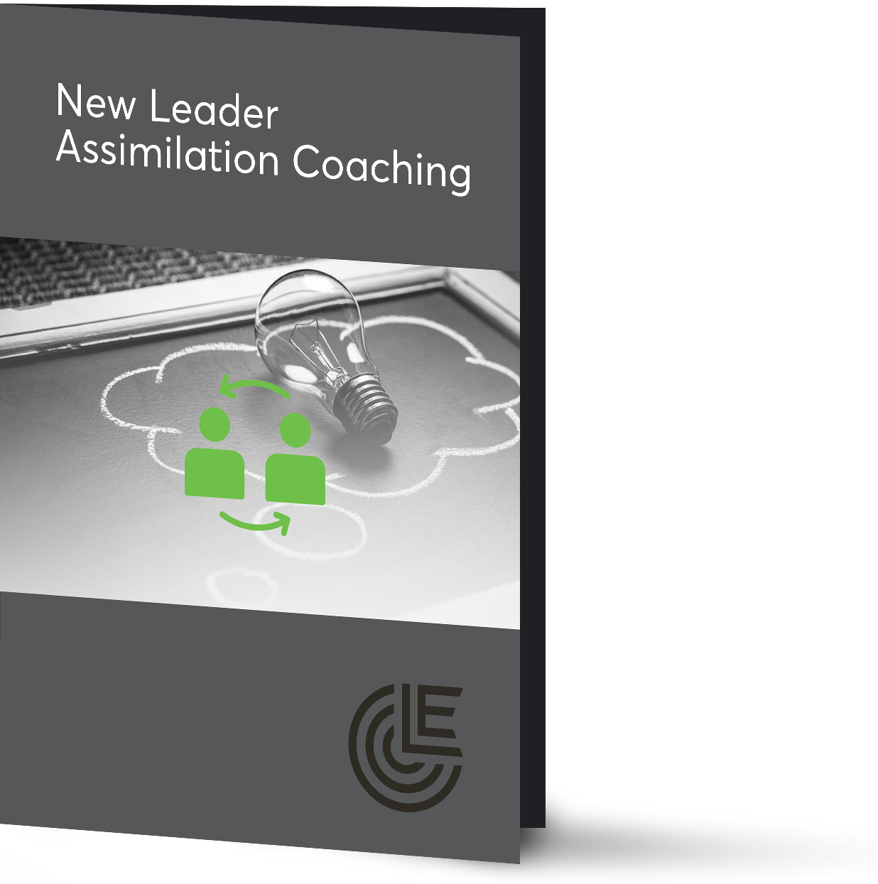 New-Leader-Assimilation-Coaching